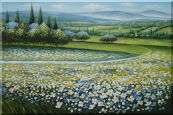 Tuscan White and Yellow Flower  Field  Oil Painting  24 x 36 inches