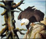 Bald Eagle On Rocks Oil Painting  20 x 24 inches
