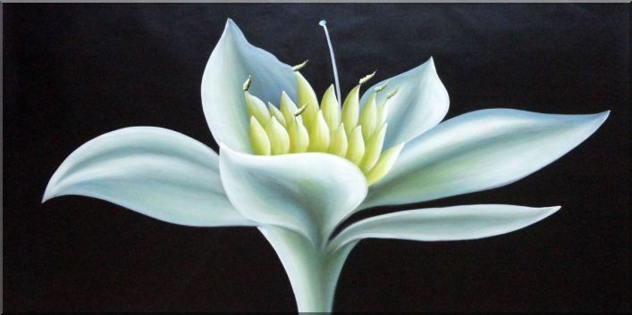 Elegant Cream White Bud in a Dark Background Oil Painting Flower Decorative 24 x 48 Inches