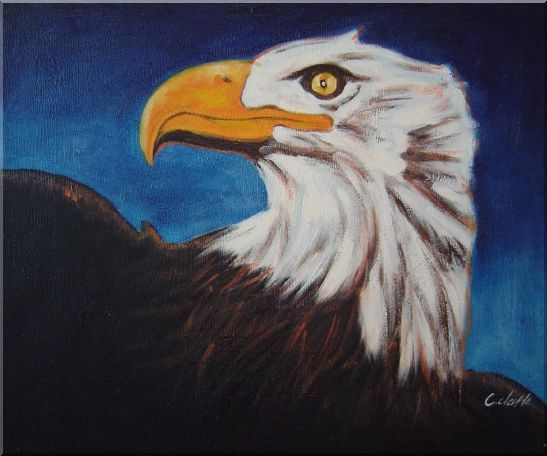 American Bald Eagle Head Oil Painting Animal Modern 20 x 24 Inches