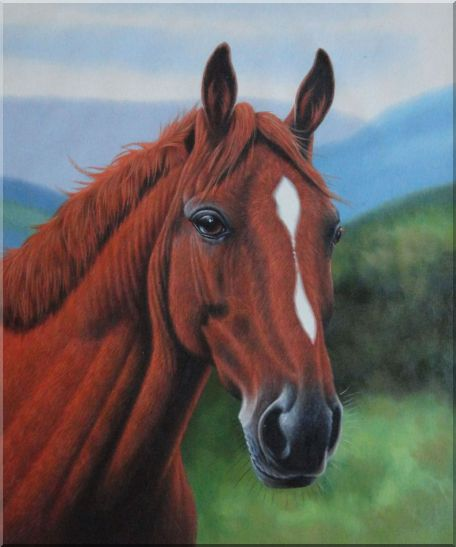 The Beauty of Red-Brown Horse Head Oil Painting Animal ...