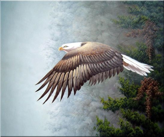 Bald Eagle, Mountain and Forest Oil Painting Animal Naturalism 20 x 24 Inches