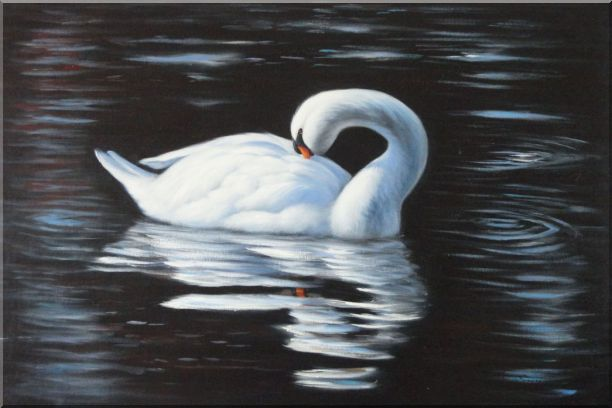Beautiful White Swan Sleeps On The Dark Water Oil Painting Animal Naturalism 24 x 36 Inches