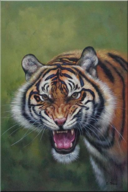 Head of Ferocious Tiger With Open Mouth Oil Painting Animal Classic 36 x 24 Inches