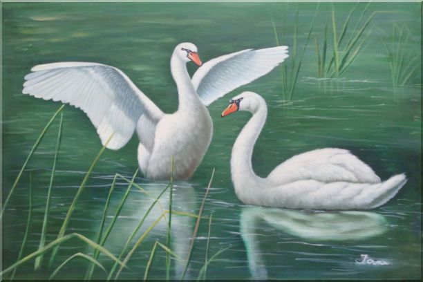 Two Lovely White Swans Playing in Lake Oil Painting Animal Naturalism 24 x 36 Inches