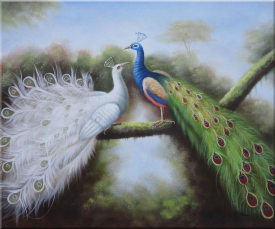 Beautiful Blue and White Peacocks Playing with Each Other Oil Painting Animal Naturalism 20 x 24 Inches