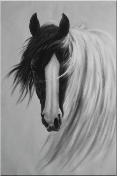 Framed Gorgeous Black White Horse With Long And Flowing White Manes