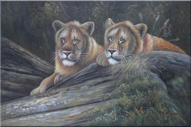 Two Female Lions Lying On Rocks Oil Painting Animal Naturalism 24 x 36 Inches