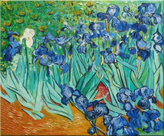 Irises Van Gogh Reproduction Oil Painting Flower Post Impressionism 20 x 24 Inches