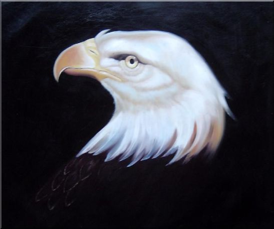 Head Of American Bald Eagle Oil Painting Animal Naturalism 20 x 24 Inches