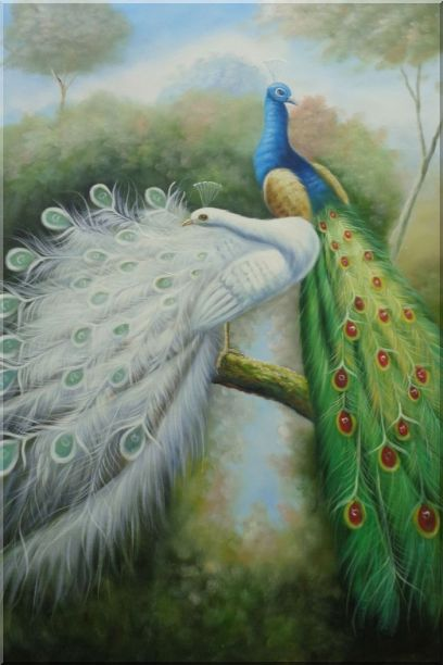 Beautiful Blue and White Peacocks - 2 Canvas Set 2-canvas-set,animal,peacock naturalism  36 x 48 inches