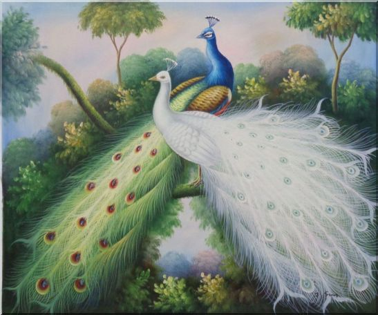 Peacocks with Bright Colorful Feathers Oil Painting Animal Naturalism 20 x 24 Inches