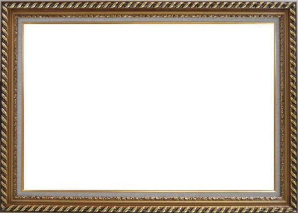 Gold Wood Frame With Linen Liner     24 x 36 inches