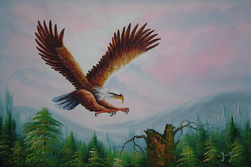 Bald Eagle Over Forest Oil Painting Animal Naturalism 24 X