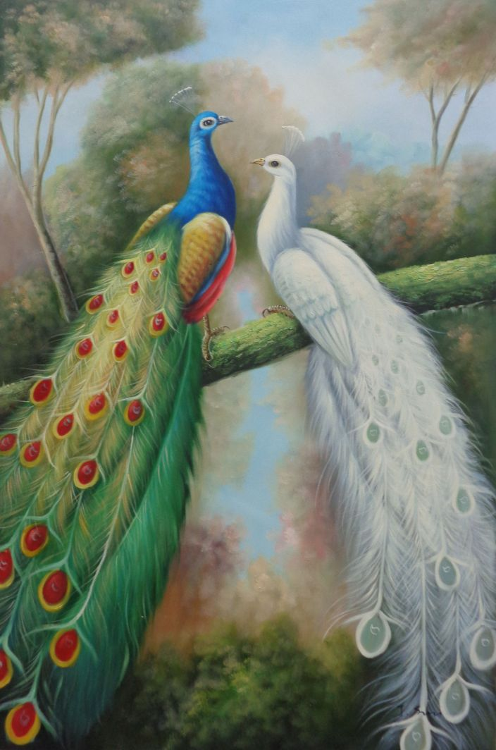 Framed Blue And White Peacocks In Garden Oil Painting