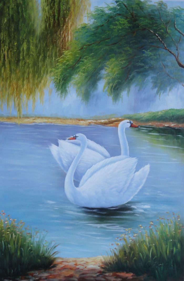 Framed Pair Of White Swans Enjoy Pleasant Time On Lake Oil