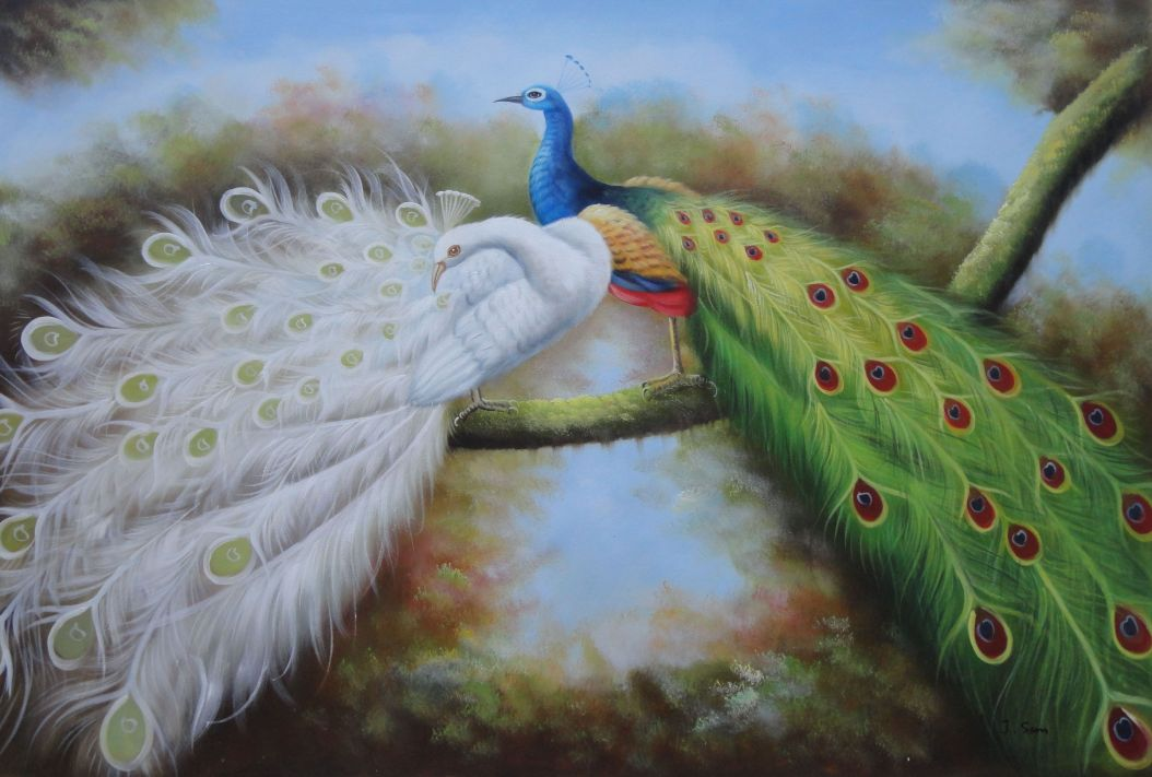 Pair Of White And Blue Peacocks In Forest Oil Painting