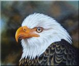 Proud and Brave National Emblem - Bald Eagle Oil Painting Animal Naturalism 20 x 24 inches