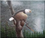 Flying American Bald Eagle and Forest Oil Painting Animal Naturalism 20 x 24 inches