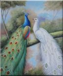 Blue and White Peacocks in Garden Oil Painting Animal Naturalism 24 x 20 inches