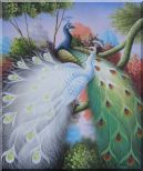 Beautiful Blue and White Peacocks On Tree Oil Painting Animal Naturalism 24 x 20 inches