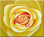 Yellow Rose Oil Painting Flower Naturalism 20 x 24 inches