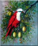 A Red Bird Enjoy in a Fruit Tree Oil Painting Animal Naturalism 24 x 20 inches