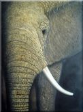 Large African Elephant Oil Painting Animal Decorative 40 x 30 inches