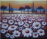 White Daisy Field Oil Painting Landscape Naturalism 20 x 24 inches