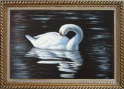 Beautiful White Swan Sleeps On The Dark Water Oil Painting Animal Naturalism Exquisite Gold Wood Frame 30 x 42 inches