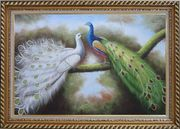 Beautiful Blue and White Peacocks Playing with Each Other Oil Painting Animal Naturalism Exquisite Gold Wood Frame 30 x 42 inches