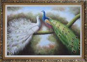 Beautiful Blue and White Peacocks Playing with Each Other Oil Painting Animal Naturalism Ornate Antique Dark Gold Wood Frame 30 x 42 inches