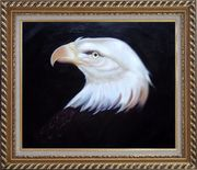 Head Of American Bald Eagle Oil Painting Animal Naturalism Exquisite Gold Wood Frame 26 x 30 inches