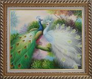 Blue and White Peacocks on Tree Branch Oil Painting Animal Naturalism Exquisite Gold Wood Frame 26 x 30 inches