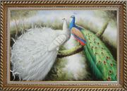 Beautiful White and Blue Peacocks Oil Painting Animal Naturalism Exquisite Gold Wood Frame 30 x 42 inches