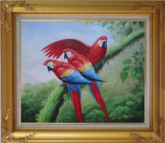 Framed Three Red and Blue Macaw Parrots on Tree Oil Painting Animal Naturalism Gold Wood Frame with Deco Corners 27 x 31 Inches
