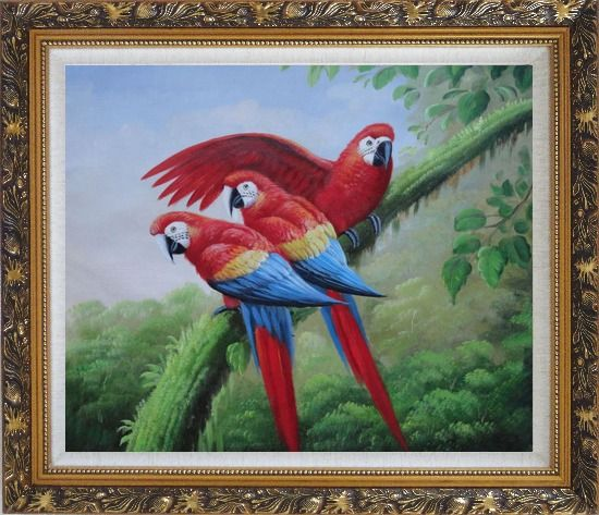 Framed Three Red and Blue Macaw Parrots on Tree Oil Painting Animal Naturalism Ornate Antique Dark Gold Wood Frame 26 x 30 Inches