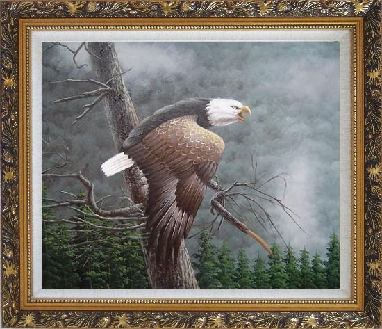 Framed Flying American Bald Eagle and Forest Oil Painting Animal Naturalism Ornate Antique Dark Gold Wood Frame 26 x 30 Inches