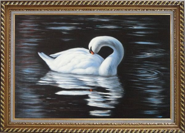 Framed Beautiful White Swan Sleeps On The Dark Water Oil Painting Animal Naturalism Exquisite Gold Wood Frame 30 x 42 Inches