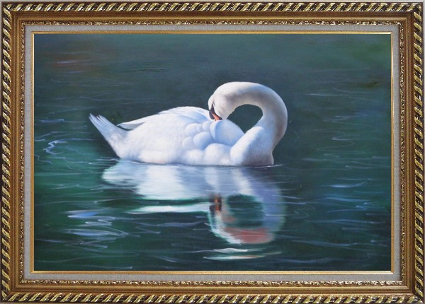 Framed Sleeping Swan in Placid Water Oil Painting Animal Naturalism Exquisite Gold Wood Frame 30 x 42 Inches