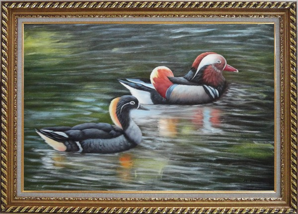 Framed Female Mandarin Duck Following with Male Duck in Water Oil Painting Animal Bird Naturalism Exquisite Gold Wood Frame 30 x 42 Inches