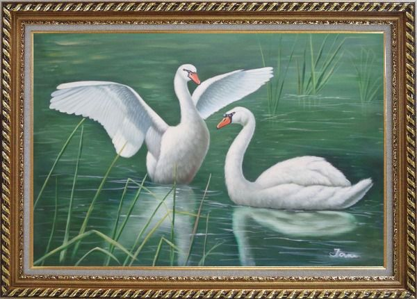Framed Two Lovely White Swans Playing in Lake Oil Painting Animal Naturalism Exquisite Gold Wood Frame 30 x 42 Inches
