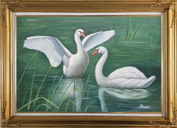 Framed Two Lovely White Swans Playing in Lake Oil Painting Animal Naturalism Gold Wood Frame with Deco Corners 31 x 43 Inches