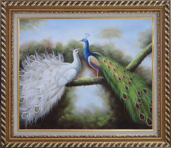 Framed Beautiful Blue and White Peacocks Playing with Each Other Oil Painting Animal Naturalism Exquisite Gold Wood Frame 26 x 30 Inches