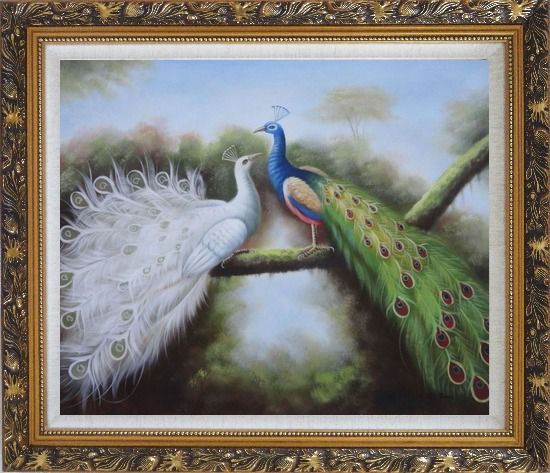 Framed Beautiful Blue and White Peacocks Playing with Each Other Oil Painting Animal Naturalism Ornate Antique Dark Gold Wood Frame 26 x 30 Inches