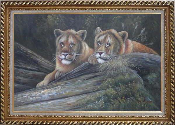 Framed Two Female Lions Lying On Rocks Oil Painting Animal Naturalism Exquisite Gold Wood Frame 30 x 42 Inches