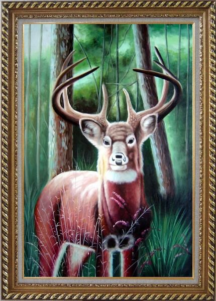 Framed Deer in Forest Oil Painting Animal Naturalism Exquisite Gold Wood Frame 42 x 30 Inches