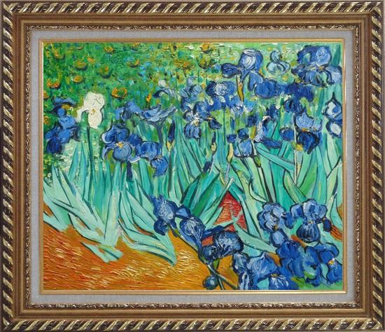 Framed irises van gogh reproduction oil painting flower for Framed reproduction oil paintings