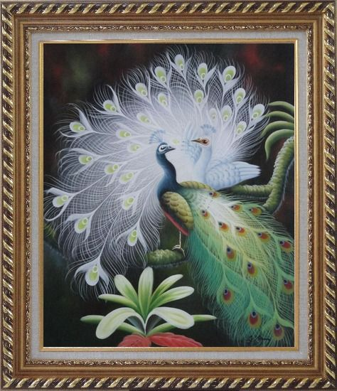 Framed White Peacock Show Feathers to Green Peacock Oil Painting Animal Naturalism Exquisite Gold Wood Frame 30 x 26 Inches