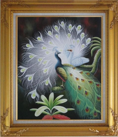 Framed White Peacock Show Feathers to Green Peacock Oil Painting Animal Naturalism Gold Wood Frame with Deco Corners 31 x 27 Inches